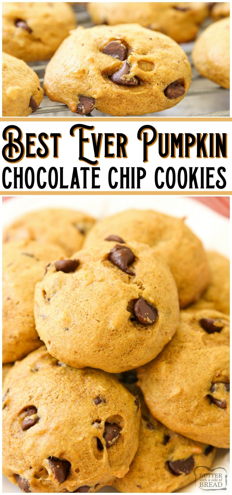 Pumpkin Chocolate Chip Cookies are soft & pillowy cookies with great pumpkin flavor! Made with pumpkin, chocolate chips and a lovely blend of Fall spices, these pumpkin cookies are a Fall favorite! #pumpkin #chocolatechip #cookies #baking #Fall #dessert #recipe from BUTTER WITH A SIDE OF BREAD