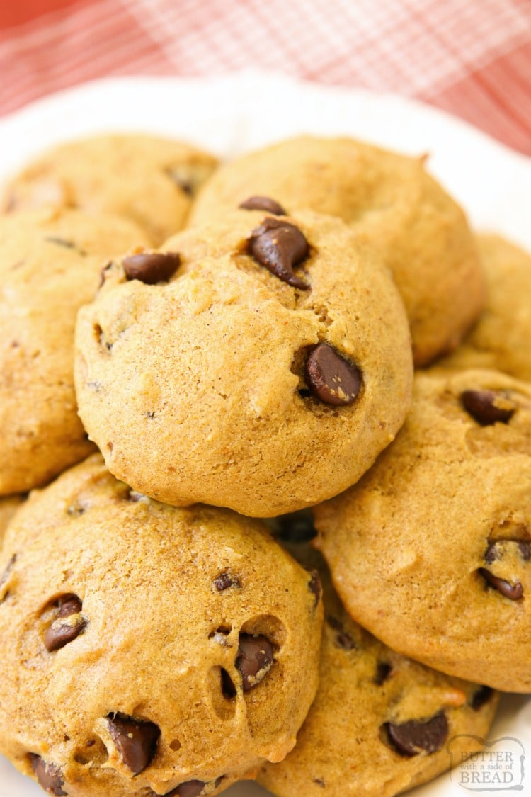 Pumpkin Chocolate Chip Cookies are soft & pillowy cookies with great pumpkin flavor! Made with pumpkin, chocolate chips and a lovely blend of Fall spices, these pumpkin cookies are a Fall favorite!