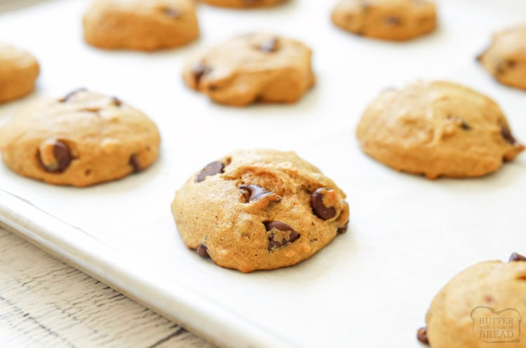 baked pumpkin chocolate chip cookies
