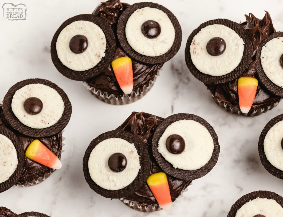 Oreo Owl Cupcakes made with chocolate ganache, Oreos and candy! Easy chocolate cupcakes made to look like little owls. Simple Halloween cupcakes that everyone loves!