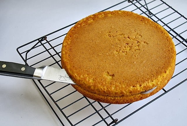 Butter With A Side of Bread: Pumpkin Torte