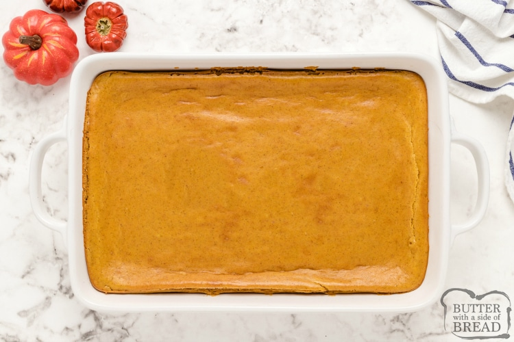 Baked pumpkin cheesecake bars