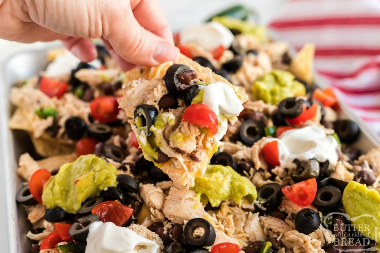 Nachos with chicken, beans, homemade cheese sauce, guacamole, tomatoes and olives