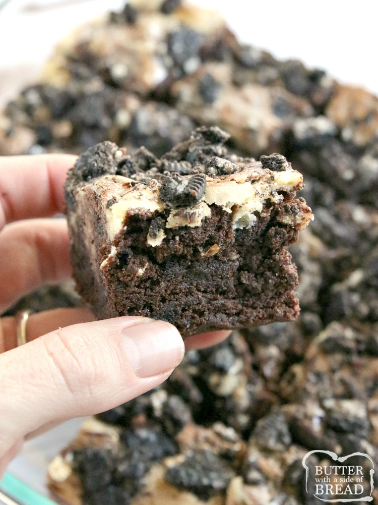Cookies & Cream Brownies combine a rich, fudgy brownie recipe with a sweet cream cheese layer that is swirled on top! There are Oreo cookies in the brownies and also on top for more cookies and cream deliciousness!