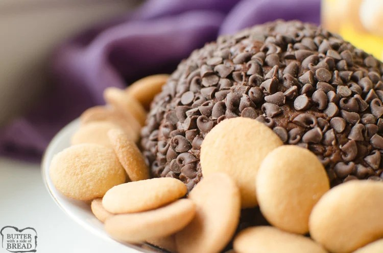 Double Chocolate Chip Cheese Ball is just that.. rich twice the chocolate turned into a sweet cheese ball! The rich chocolate batter combined with the tangy cream cheese then rolled in mini chocolate chips makes this a rich and delicious appetizer or dessert!