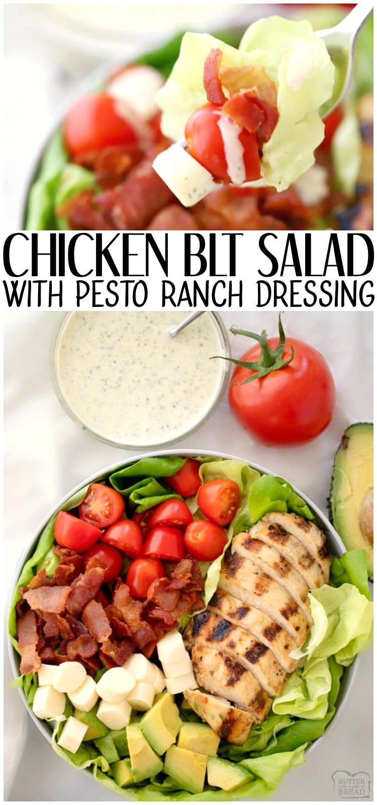 Grilled Chicken BLT Salad is an easy summer salad recipe filled with grilled marinated chicken, bacon, tomatoes, cheese and butter lettuce. Topped with a creamy pesto ranch dressing that's easy and flavorful, this salad is a huge hit!  #BLT #chicken #salad #ranch #recipe from Butter With a Side of Bread