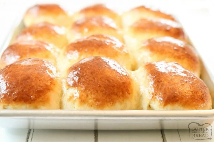 Homemade Dinner rolls recipe