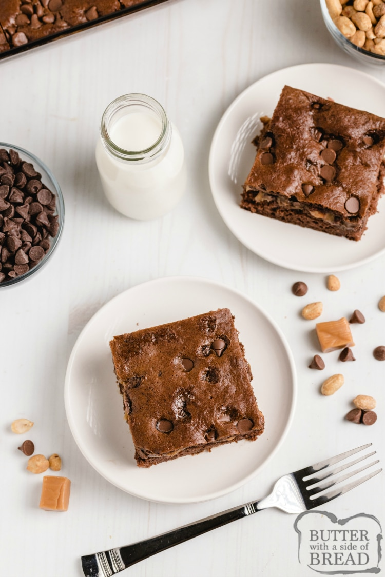 Slice of chocolate cake with a caramel layer and peanuts