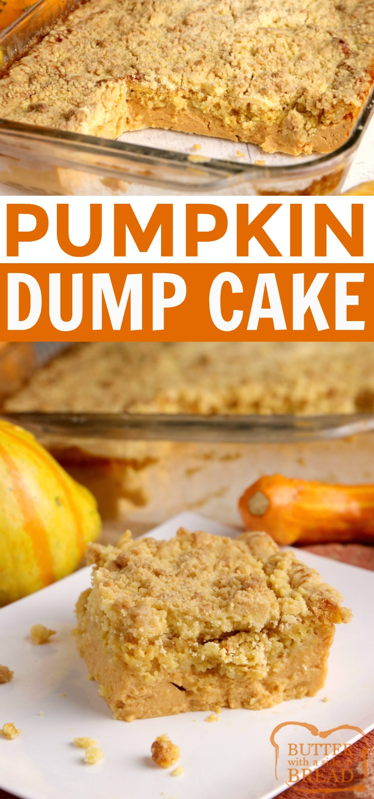 This pumpkin dump cake is so easy to make and is made with only 5 ingredients! This pumpkin cake recipe tastes like pumpkin pie and makes enough to feed a crowd. Delicious warm or cold - the perfect fall dessert!