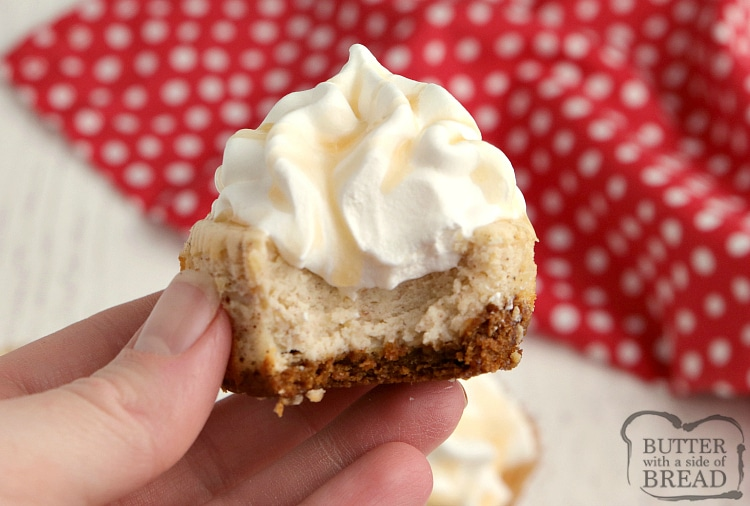 Miniature eggnog cheesecake with gingersnap cookie crust