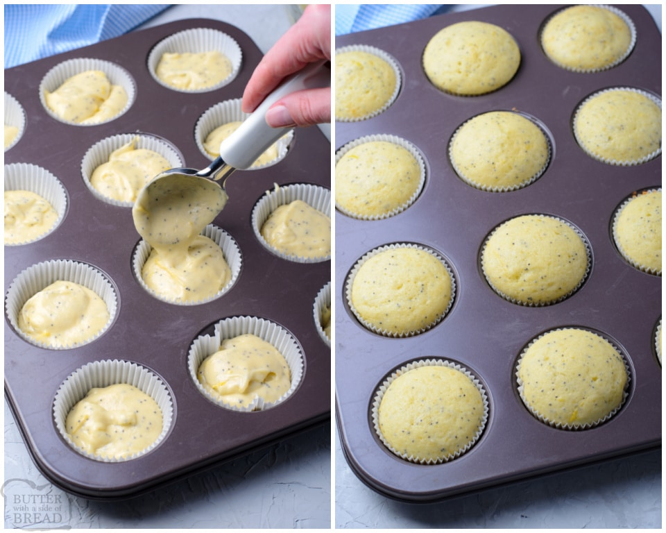 how to make the Best Lemon Poppy Seed Muffin recipe