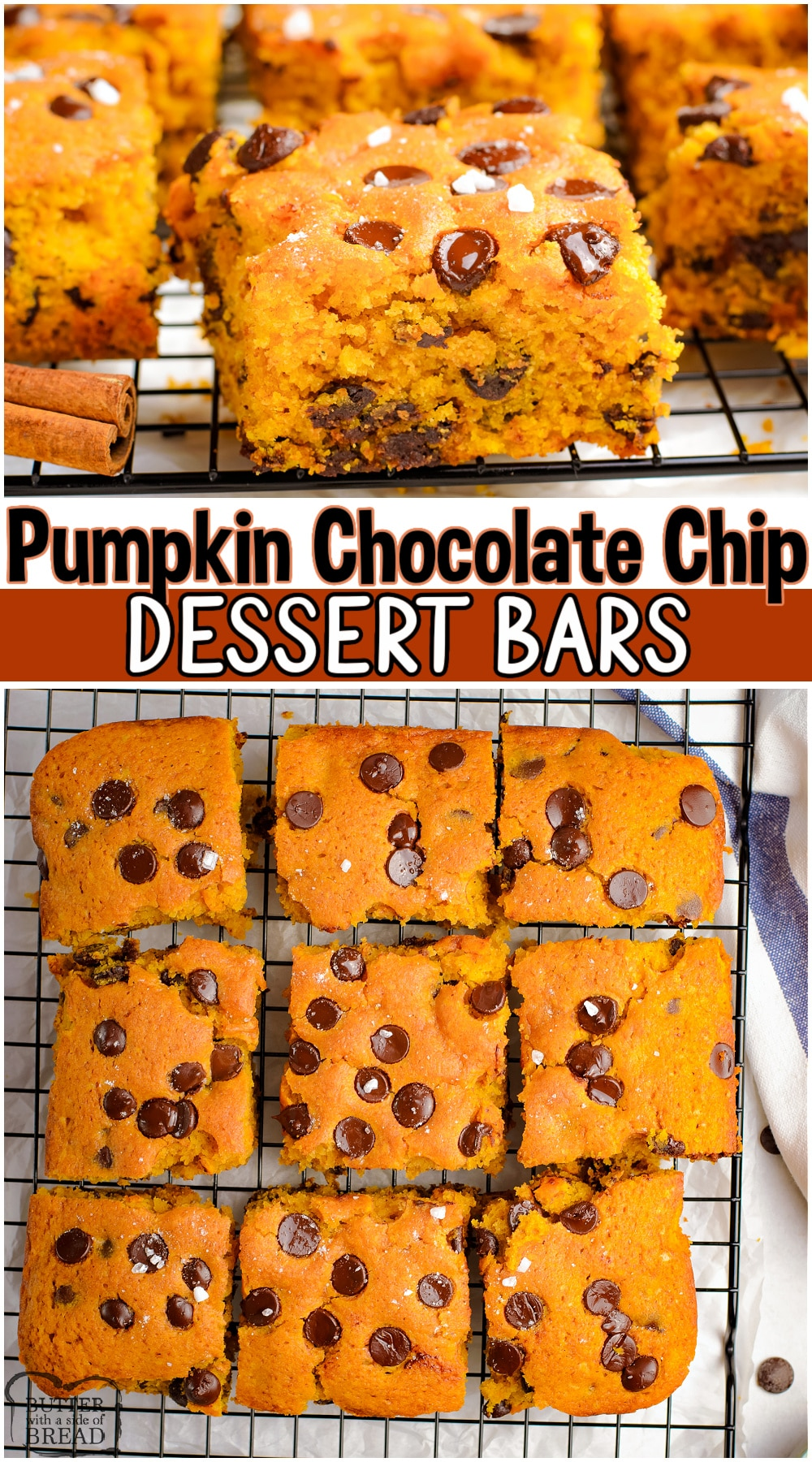 Pumpkin Chocolate Chip Bars made with pumpkin puree, brown sugar, brown butter & a warm blend of Fall spices! Pumpkin dessert bars loaded with chocolate chips & sprinkled with sea salt for the perfect finishing touch! #pumpkin #chocolatechip #baking #Fall #brownbutter #easyrecipe from BUTTER WITH A SIDE OF BREAD