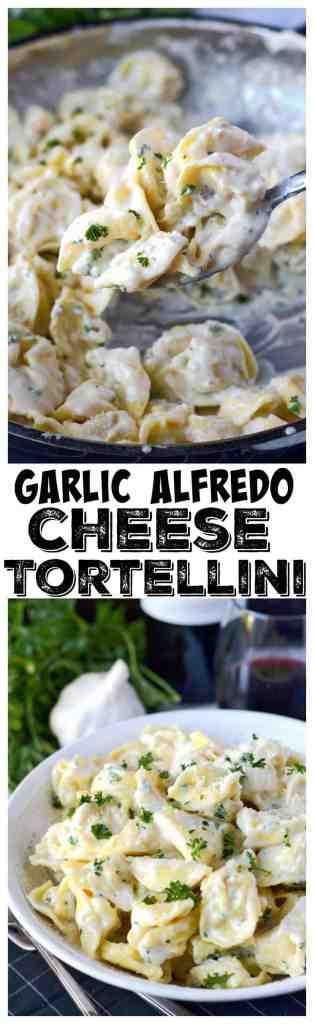 Garlic alfredo cheese tortellini