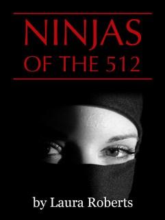 Ninjas of the 512