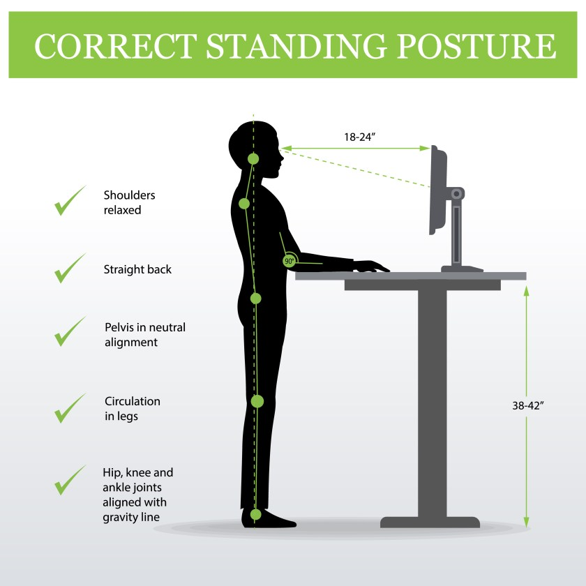 Person standing at height adjustable desk