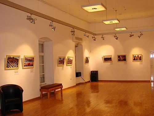 Izlozba u Modernoj galeriji povodom proslave kineske Nove godine - 14