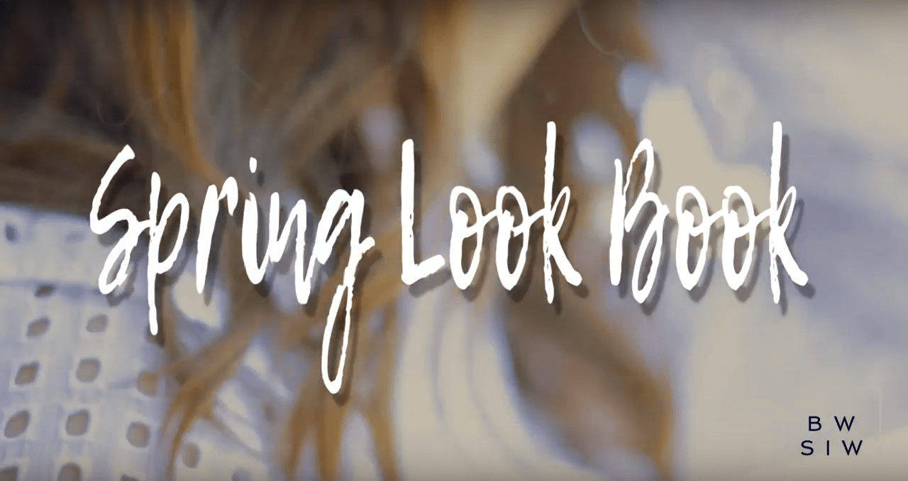 But What Should I Wear Spring Lookbook 2017 by Allison Kelley Video