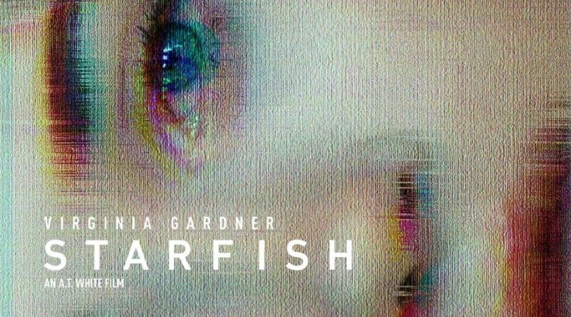 Starfish - But Why Tho