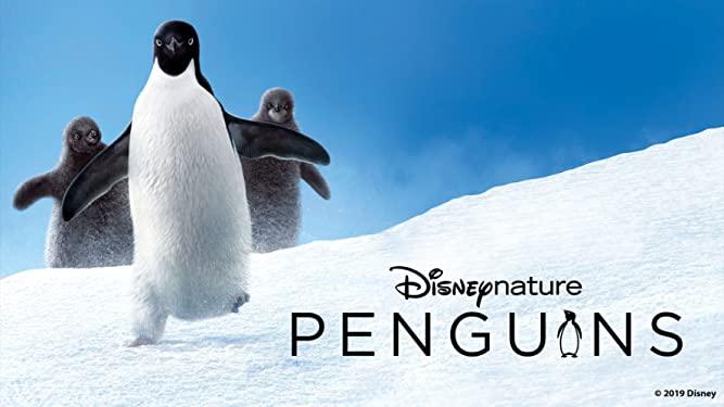 Disneynature Penguins