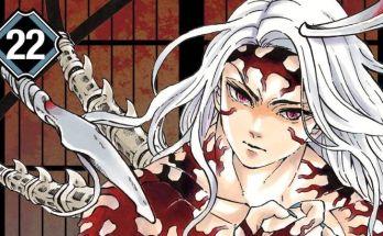 Demon Slayer Volume 22