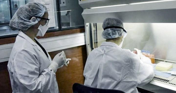 Coronavirus: Salta sumó 261 nuevos contagios y 4 fallecimientos