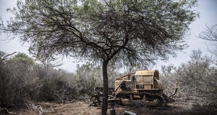 Desmontes: las topadoras están listas, aunque el Gobierno diga lo contrario