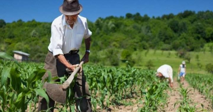 Agricultura Familiar presentó referentes e incluyó definición «Campesino Indígena»