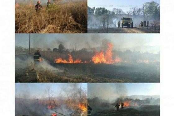 Los incendios también se producen en Salta: decenas de focos en el interior