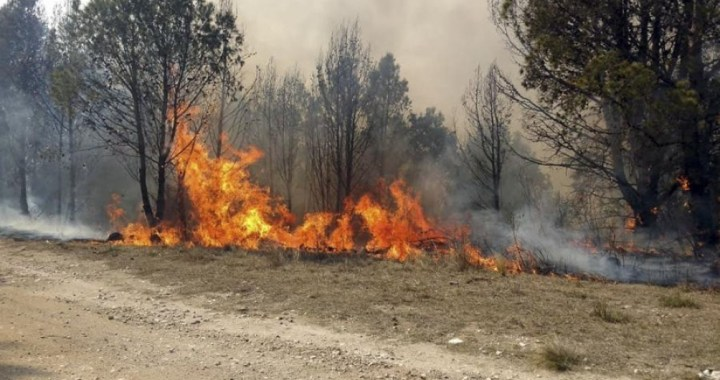 Hay más de 190 mil hectáreas quemadas en Córdoba y el registro es el más alto de los últimos 20 años