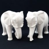 A Pair of Elephants with Trunks Down