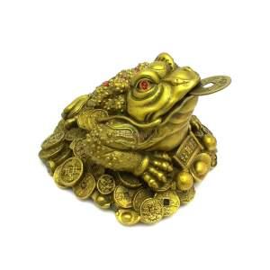 Brass Feng Shui Money Frog on Treasure1