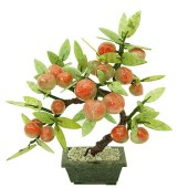 Fruitful Peach Tree Of Immortality1