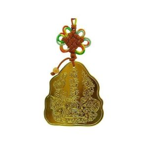 Good Business Feng Shui Amulet Coin1