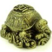 Good Fortune Tortoise