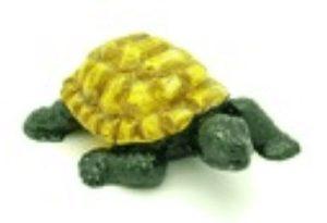 Green Tortoise for Long Life