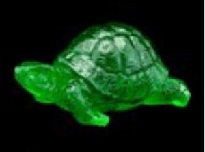 Green Tortoise for Longevity