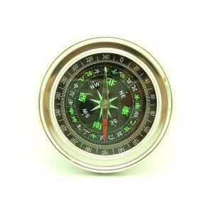 Modern Compass In Chinese1