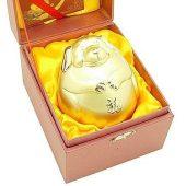Elegant Golden Dog Piggy Bank1