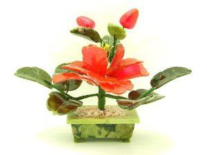 Feng Shui Peony Flower Plant