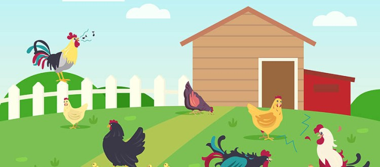 Live of hens and roosters in countryside. Chicken, grass, lawn flat vector illustration. Farm animals and birds concept for banner, website design or landing web page