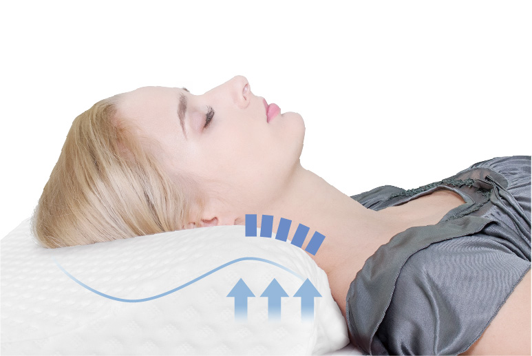 bgreen 全方位防蹣釋壓枕 (放鬆、止鼾超好用) - P2 W1180 12