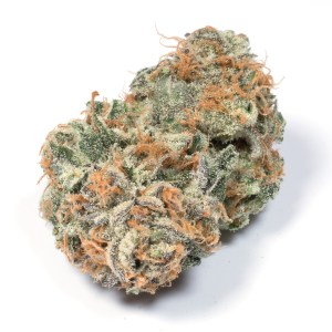 Jack Herer, buy Jack Herer online, how to get Jack Herer online