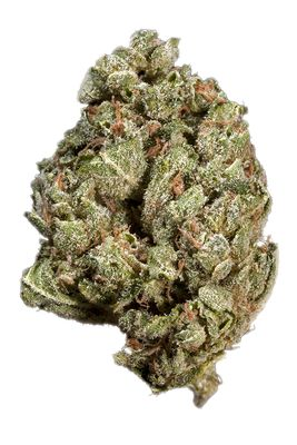 White Fire Alien OG, Buy White Fire Alien OG online , White Fire Alien OG online rteviews