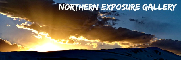 Tom D Welsh Northern Exposure Muskoka Gallery