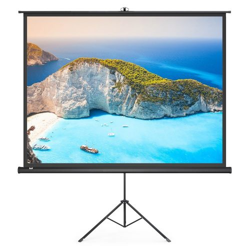 TaoTronics Indoor and Outdoor Movie Screen 100 Inch Diagonal 4:3 with a Premium PVC Matte Design - Projector Screen with Stands