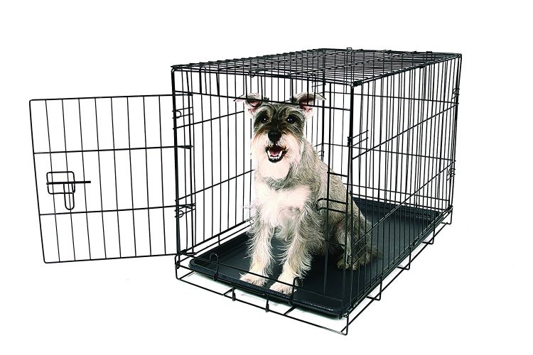 Carlson Pet merchandise Carlson Compact Single Door Metal Dog Crate