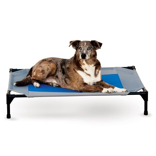 K&H Pet Products Coolin' Pet Cot Cooling Elevated Pet Bed