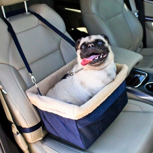 Deluxe Dog Booster seat by Devoted pooch Metal Frame Construction - Clip-on Safety Leash - Zipper Storage Pocket – excellent for little and Medium Pets up to twenty lbs