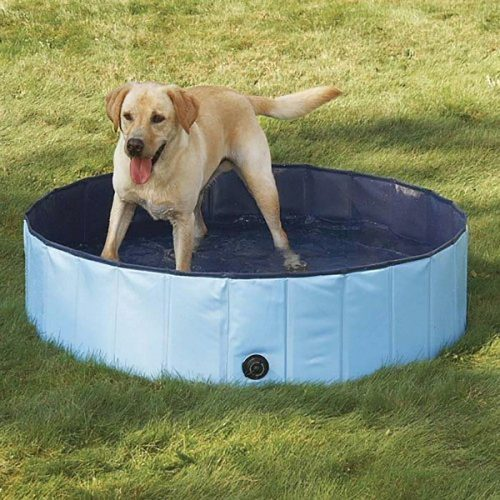 Dog Bathtub, PYRUS Collapsible Pet Bath Pools Inflatable Dog Bathtub Tub for Dogs or Cats - dog pools