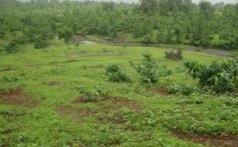 Ways to Make Money On Your Vacant Land In Lagos